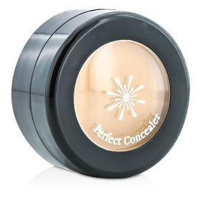 The Style Perfect Concealer (Natural Beige)