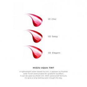 Aqua Tint - Chic 01 (5g)